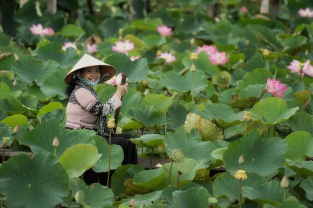 Dong Thap best destination in Vietnam to visit