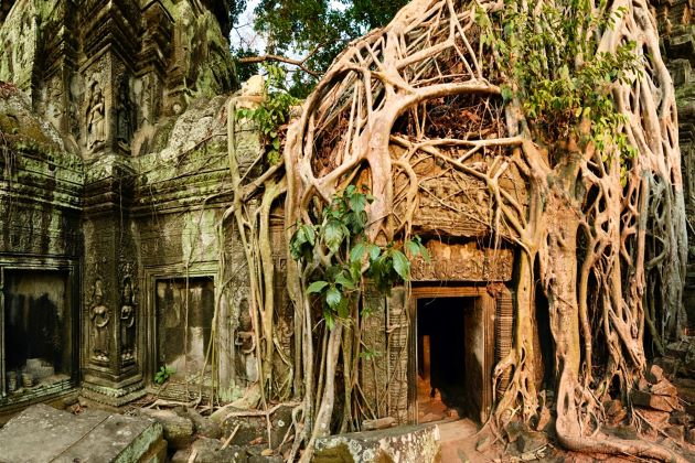 temple in angkor complex